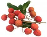Mauritius Lychee - YP Farms